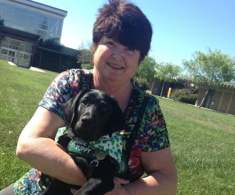 "Valerie Mull trains Guide Dogs for the Blind on ""Napa Valley College Now"""