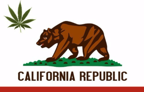 Dr. Karen Smith, Director of California's Dept of Public Health talks Cannabis legalization and Public Helath